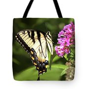 Eastern Triger Swallowtail Tote Bag