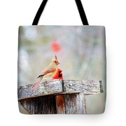 Eating Out With Dad Tote Bag