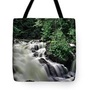 Eau Claire Gorge Water Fall Tote Bag