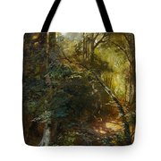 Ebert, Carl 1821 Stuttgart - 1885   Inside A Forest. Tote Bag