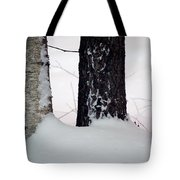 Ebony And Ivory Tote Bag