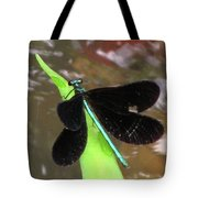 Ebony Jewel Damselfly Tote Bag