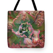 Echeveria Plant At Balboa Park 2 Tote Bag