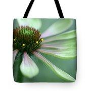 Echinacea - Green Envy Tote Bag