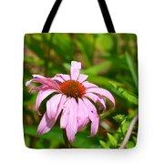 Echinacea 16-02 Tote Bag