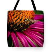 Echinacea And Syphrid Tote Bag