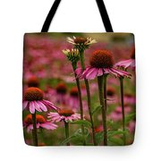 Echinacea Front And Center Tote Bag