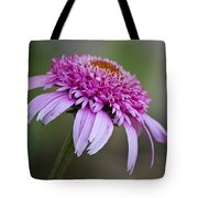 Echinacea Pink Double Delight Tote Bag