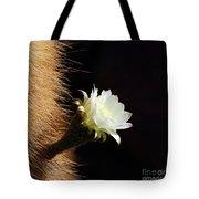Echinopsis Atacamensis Cactus Flower Tote Bag