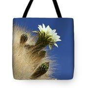 Echinopsis Atacamensis Cactus In Flower Tote Bag