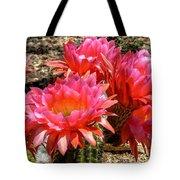 Echinopsis Flowers In Bloom II Tote Bag