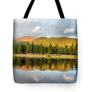 Echo Lake Painterly 1 Tote Bag