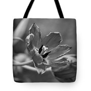 Echoes Of Past Glory Tote Bag