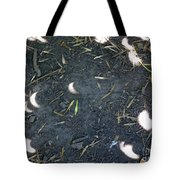 Eclipse Art 2 Tote Bag