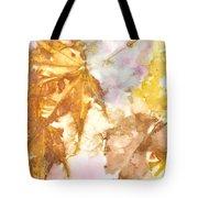 Eco Print 010b Tote Bag