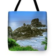 Ecola State Park Oregon 2 Tote Bag by Shiela Kowing