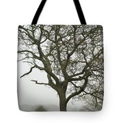 Edgartown Scene Tote Bag