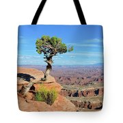 Edge Of The Cliff Tote Bag