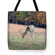 Edge Of The Forest Tote Bag