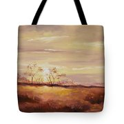 Edge Of Tucson Tote Bag
