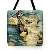 Edgewater Shores Tote Bag
