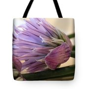 Edible Beauty Tote Bag