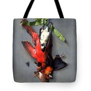 Eduard Quitton  Still Life With Green Ribbon, Fly, And Four American Birds Tote Bag
