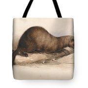 Edward Lear - A Weasel Tote Bag