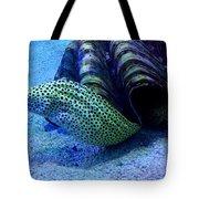 Eels Tote Bag