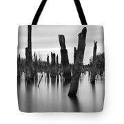Eerie Lake Tote Bag