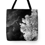 Eerie Skies In Cornville Tote Bag