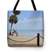 E G Simmons Park Beach Tote Bag