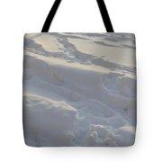 Eggwhite Snow Tote Bag