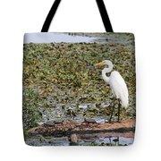 Egret And Turtles Tote Bag
