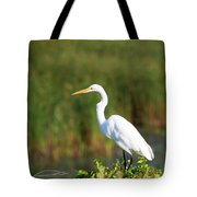 Egret At The River Tote Bag