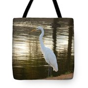 Egret At Waters Edge Tote Bag