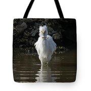 Egret Catches A Stickleback Tote Bag