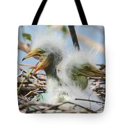 Egret Chicks In Nest With Egg Tote Bag