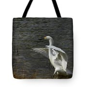 Egret Dance Tote Bag