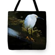 Egret Tote Bag by Daniele Smith