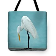 Egret Foot Inspection Tote Bag