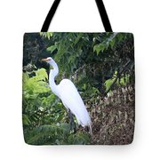 Egret In A Tree Tote Bag