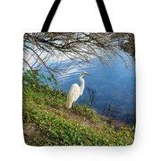 Egret In Florida Color Tote Bag