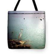 Egret On Marathon Key Tote Bag