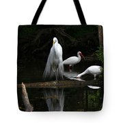 Egret Reflection Tote Bag