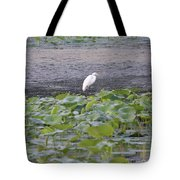 Egret Standing In Lake Tote Bag