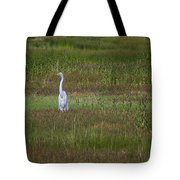 Egrets In A Field Tote Bag