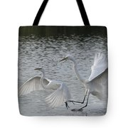Egrets In Flight  Tote Bag