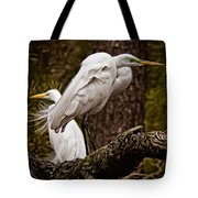 Egrets On A Branch Tote Bag
