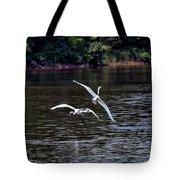 Egrets V Tote Bag